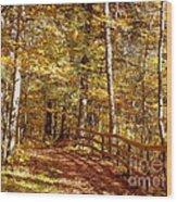 Fall In Michigan Wood Print
