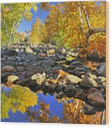 Fall In Oak Creek  Wood Print