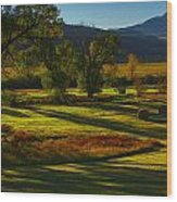 Fall In The Fields Wood Print