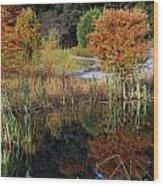 Fall In The Wetlands Wood Print