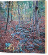 Fall In The Woodlands Wood Print
