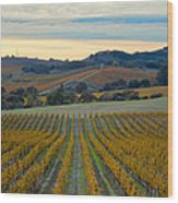Fall In Wine Country Wood Print