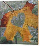 Fall Ing In Love Wood Print