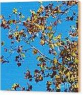 Fall-ing Leaves Wood Print