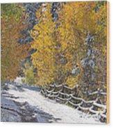 Fall Into Beartrap Meadow - Casper Mountain - Casper Wyoming Wood Print