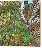 Fall Is Here Wood Print