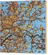 Fall Is Here Wood Print