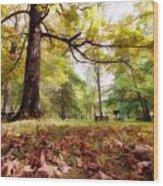 Fall Iv Wood Print