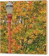 Fall Lamppost Wood Print
