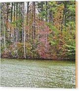 Fall Landscape 2 Wood Print