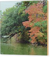 Fall Landscape Around The Lake 5 Wood Print