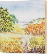 Fall Landscape Briones Park California Wood Print