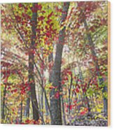 Fall Laser Beams Wood Print