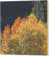 Fall Leave On The East Verde River Wood Print