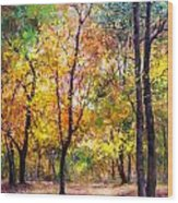 Fall Leaves At Indiana University Wood Print