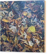 Fall Leaves In A Pond Wood Print