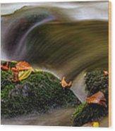 Fall Leaves On Mossy Rocks Wood Print