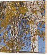Fall Leaves On Open Windows Jerome Wood Print
