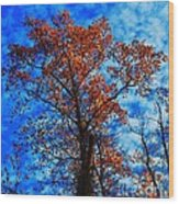 Fall Majesty Wood Print