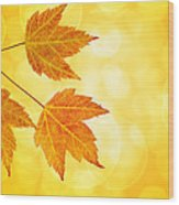 Fall Maple Leaves Trio With Bokeh Background Wood Print