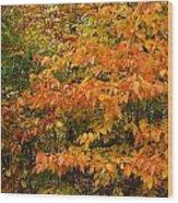 Fall Mix Wood Print