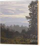 Fall Morning 2 Wood Print