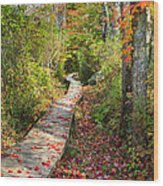 Fall Morning Wood Print by Bill Wakeley