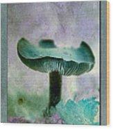 Fall Mushroom 18 Wood Print