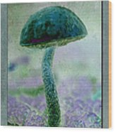 Fall Mushroom 19 Wood Print