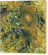 Fall Mystic Wood Print