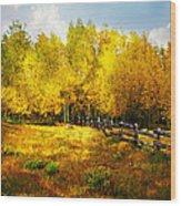 Fall Near Lake City Wood Print