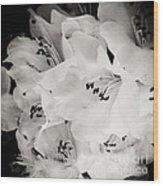 Fall Of Flowers Wood Print