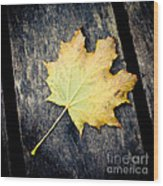 Fall Of The Leaf Wood Print