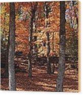 Fall On A Stump Wood Print