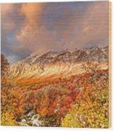 Fall On Display Wood Print