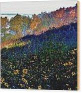 Fall On Garvin Heights Wood Print