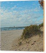 Fall On The Beach Wood Print