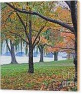 fall on the Potomac River Wood Print