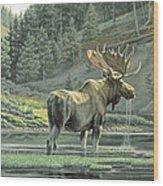 Fall On The Yellowstone Wood Print