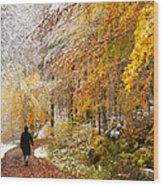 Fall Or Winter - Autumn Colors And Snow In The Forest Wood Print