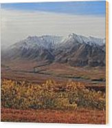Fall Over Mountain Wood Print