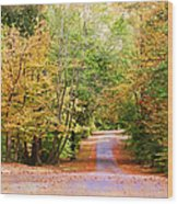 Fall Pathway Wood Print by Judy Vincent