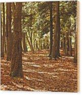 Fall Pathway Wood Print