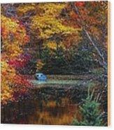 Fall Pond And Boat Wood Print by Tom Mc Nemar