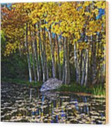 Fall Pond In Mammoth Wood Print