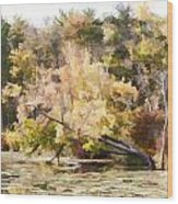 Fall Pond Wood Print