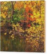 Fall Reflection Wood Print by Robert Mitchell