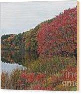 Fall Reflection Wood Print