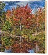Fall Reflections In Maine Img 6312 Wood Print