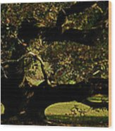 Fall Rising Wood Print by Odd Jeppesen